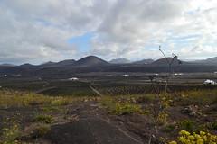 Lanzarote National Park (simridSR) Tags: lanzarote landscape volcano national park