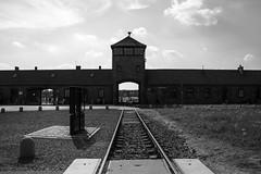20130801Auswitch II Birkenau01 (J.A.B.1985) Tags: auswitch poland polonia iiww worldwar iigm guerramundial holocaust holocausto soah