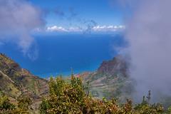 Kalalau Lookout, Kauai (AgarwalArun) Tags: sonya7m2 sonyilce7m2 hawaii kauai island landscape scenic nature views mountain fog clouds napalicoast pacificocean ocean water waves napali ruggedcoastline cliffs kalalaulookout