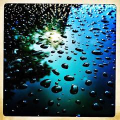 Clean car (not mine). #iPhone #iPhonemacro #macro #waterdrops (Kindle Girl) Tags: macro waterdrops iphone iphonemacro iphone365 hipstamatic