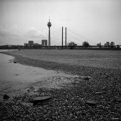 Dusseldorf, Rheinturm (Lacmaaan) Tags: dsseldorf dusseldorf duesseldorf rheinturm blackandwhite monochrome monokrm grayscale 11 lubitel 166b riverside rhein rajna