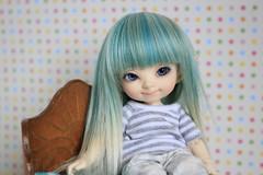 Celia (mmarusya11) Tags: fairyland pukifee pupu formydoll wig