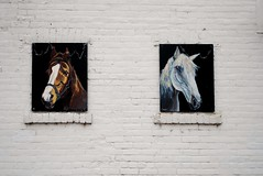 Horse Stable (Cragin Spring) Tags: wisconsin wi horse stable mural chippewafalls chippewafallswi chippewafallswisconsin midwest unitedstates usa unitedstatesofamerica