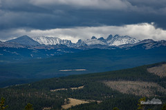 Blacktooth After Storm (kevin-palmer) Tags: bighornmountains bighornnationalforest cloudpeakwilderness wyoming nikon180mmf28 telephoto nikond750 fall autumn september snow snowcapped blacktoothmountain pinetrees clouds cloudy overcast redgraderoad cold