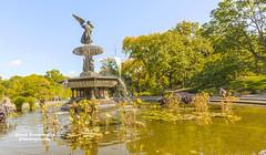 Bethesda Fountain in New York's Central Park (D200-PAUL) Tags: bethesdafountain angelofthewaters centralpark manhattan newyorkcity nyc newyork paulfernandez