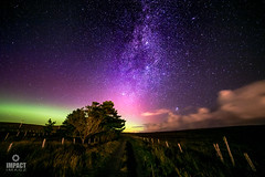 Aurora, Milky Way, Satellites and The Andromeda Galaxy, all over Gress (Impact Imagz) Tags: aurora northernlights auroraborealis milkyway andromeda galaxy andromedagalaxy nebula whirlpoolgalaxy nightsky longexposure gress isleoflewis westernisles outerhebrides scotland