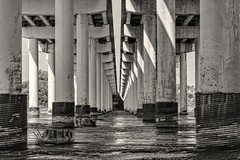 Under the Road Again (BW) (brev99) Tags: sigma70mm28macro bridge d7100 perfecteffects10 ononesoftware columns water arkansasriver shadows rust support roads blackandwhite
