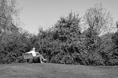 Ahhh, Life's Good (lclower19) Tags: black white bench seat person trees bw hornpond woburn massachusetts