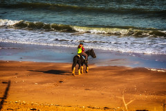 Joss Bay, Broadstairs (@bill_11) Tags: broadstairs england places jossbay horse rider texting sand beach seaside waves