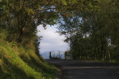 Boroa (Elsa Fdez) Tags: verde carretera cerca bosque arboles montaas paisvasco boroa vizcaya
