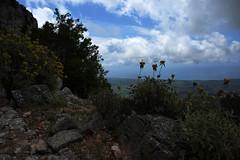 At the top (Vojinovic_Marko) Tags: mountain greece grka hellas nature flowers flower travel nikon d7200 planina rocks zalongo