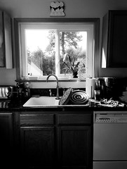 scenes from a rainy day (bunchadogs & susan) Tags: rainyday kitchen bw fortunacalifornia