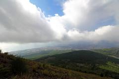 (ngiambr1) Tags: vesuvius grass hill horizon volcano hike climb bush blue green land italu sorrento naples