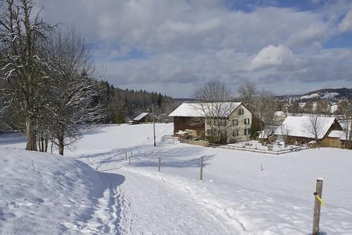 Waldegg