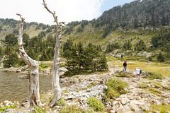 Lac Achard (Caro2607) Tags: lac chamrousse isre lacachard
