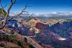 Waimea Canyon (AgarwalArun) Tags: sonya7m2 sonyilce7m2 hawaii kauai island landscape scenic nature views mountain waimeacanyon statepark grandcanyonofthepacific canyon valleys mountains waterfall trees cliffs peaks