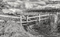 Black & White Stile (robinta) Tags: mono monochrome blackwhite pentax ks1 cleadon contrast clouds sky moody fence field nature