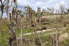 Landscape (OCHAHaiti) Tags: haiti hurricane matthew ocha wfp un united nations