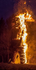 The  9m high Wicker Man burns at the 2013 Butser Farm Beltain Festival (Anguskirk) Tags: uk england may hampshire beltane beltain celticfestival wickerman chalton butserhill 2013 butserancientfarm ancientceremony