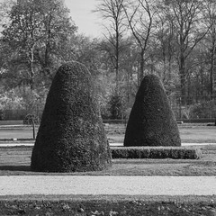 V17 symmetry (Dennis Kussener) Tags: park bw white abstract black lines square grey cone symmetry hedge dennis haag vrijbroekspark kegels dennisfunmebe denniskussener