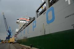 Chipolbrok Pacific (DST_7869) (larry_antwerp) Tags: chipolbrokpacific zuidnatie terminal 9710177 antwerp antwerpen       port        belgium belgi          schip ship vessel        chipolbrok