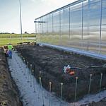New Greenhouse addition - July 26, 2016