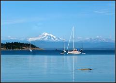 Lofty Mt. Baker (edenseekr) Tags: baker mountain pugetsound sailboat marine