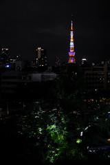 P2JG5349 (jojotaikoyaro) Tags: street snapshot candid fujifilm xpro2 xf35mmf14 tokyotower