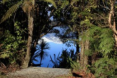 Not what it seems (wisnesky1) Tags: reflection green water blue plants lake upsidedown landscape snow mountain outdoor nature newzealand nz colour canon tree plant serene