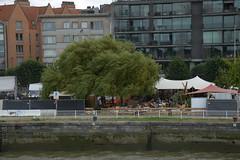 Antwerpen DST_7586 (larry_antwerp) Tags: zomerbar summerbar bar summer tree antwerp antwerpen       schelde        belgium belgi
