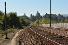 Vista para Este - Livrao (valeriodossantos) Tags: comboio train infraestruturasdeportugal infraestruturas refer estaes estaodalivrao livrao marcodecanaveses linhadodouro caminhodeferro portugal