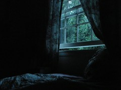 Morning, First Light (Room With A View) Tags: window bed curtains maryland