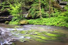 160524_161148_CB_0328 (aud.watson) Tags: europe czechrepublic bohemia decindistrict hrenska riverkamenice kamenicegorge edmundgorge gorge ravine river water rocks rockformation cliffs