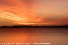 Chanonry Point Sunrise 27 Aug-16-5989 (tim stenton www.TimtheWhale.com) Tags: blackisle chanonrypoint dawn fortrose highland morayfirth rosemarkie scotland sunrise