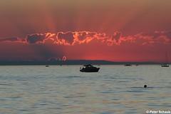 Wenn die Sonne untergeht, ... (77PS) Tags: bregenz bodensee lakeconstance vorarlberg sonnenuntergang sundowner bregenzerbucht