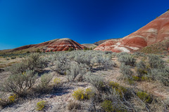 Painted Hills - 1 (rpdphotography) Tags: paintedhills