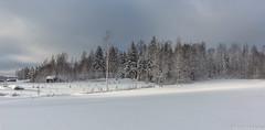 Talvimaisema, Winter landscape (pohjoma) Tags: maisema talvimaisema winterlandscape talvi winter scenery canoneos5dmarkiii canonef1635mmf4lisusm