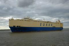 Asian Dynasty DST_7980 (larry_antwerp) Tags: 9203588 eukor asiandynasty roro pctc port        belgium belgi          schip ship vessel        schelde