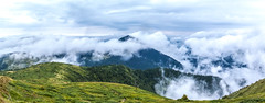 Above the Clouds (Alex Demich) Tags: mountains mountain carpathian ukraine landscape nature panorama clouds cloudy cloudsstormssunsetssunrises summer top tourism trees forest sky horizon outdoor hiking climbing footpath trail green white grass maramures beautiful carpathians travel