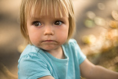 In sight (Dagny Takes Photos) Tags: child baby girl gold bokeh outdoor photography toddler eyes glow shimmer