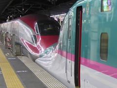 Kissing the Asama (seikinsou) Tags: japan spring kanazawa nikko jr train railway hayabusa asama shinkansen omiya platform station
