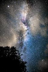 Starlit night (Rock-paper-scissors) Tags: stars star milkyway galaxy astro astrophotography nature shootingstar andromeda tangen norway night nightscape astronomical space universe longexposure sigmaart sky nightsky
