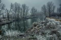 Crudo invierno (Josinisam) Tags: copyright josinisam joseignaciosantamaria nikond7000 niebla invierno hielo naturaleza valladolid medinaderioseco castillaylen canaldecastilla agua rio