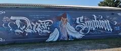 Graffiti, Montauban (thierry llansades) Tags: montauban toulouse matabiau gare train graf graffs graffiti graffitis spray aerosol painting bombing fresque tren mur urban art