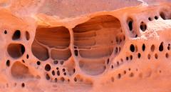 holes (J Blough) Tags: utah nps canyonlands redrock