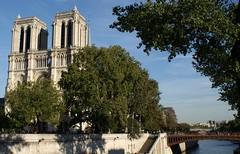 Paris , Notre Dame (tor-falke) Tags: city paris france french town frankreich ngc notredame capitale iledefrance frenchtown francais parisien notredameparis parisbeautiful torfalke flickrtorfalke