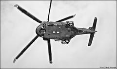Bray Air Spectacular (2012) (77) Irish Air Corps - AW139 Helicopter (Lisa Tiffany Photography) Tags: ireland dublin plane skydiving airplane army fly casa nikon aircraft military flight craft eire pilot bray bannertowing pc9 aerobaticteam irishevent irishaircorps braysummerfest aw139 gzexl simtech defenceforces brayseafront dhc1chipmunk d7000 gzxcl gzxel pilatuspc9m aerarannatr brayairshow irishaviationauthority irishairshow summer2012 rv8tors skywestaviation brayairspectacular2012 gerryhumphreysvansrv7eihum migaviatika890sn04078mk bede5eidnn aerlingusregionalatr72500 davebrutonsbach342decxa thebladesgoffo theblackknightsirisharmyparachuteteam andrechadwickcondorgayfc sars92sikorsky aerlingus1320 irishpilot