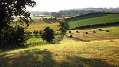 Old Church Farm Sunrise (ambo333) Tags: uk england dawn farm cumbria hay haybale brampton haybales oldchurchlane oldchurchfarm