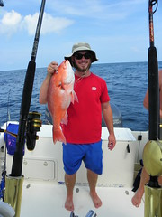 Red Snapper (Hollingsworth18) Tags: gulfofmexico fishing penn pursuit redsnapper saltwaterfishing pursuitboats