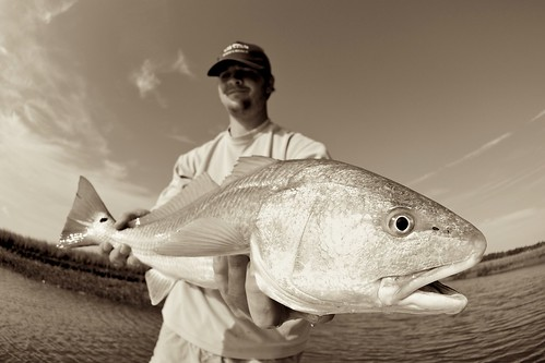 blake redfish B&W